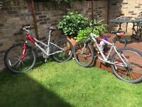A pair of almost identical boy's and girl's Giant Rock teenager's mountain bikes.