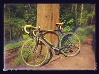 Vintage F. Moser Road Bike size L - Needs a little TLC but can ride away in style