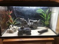 Two Good As New Fish Tanks including accessories