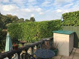 Garden services. Fencing. Guttering etc. Garden work. Landscaping