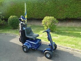 Patterson ride on golf buggy