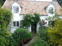 Amazing Wild Rose Cottage...live the dream Monday to Friday let!
