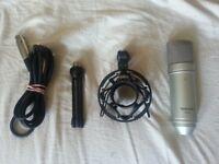 Condenser Mic (Tascam TM-80)