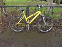 """Lightweight Ladies RALEIGH Mountain Bike. 16"""" Frame. Fully Serviced & Ready To Ride. Guaranteed."""