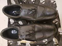 VC 101 Envoy Black Executive Oxford Safety boot