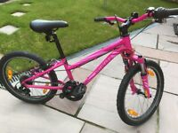 Specialized Hotrock Girls Bike (Ideal for Ages 6-10)