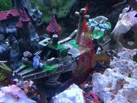 Fish tank aquarium ornaments /accessories/ fluval heater and filter