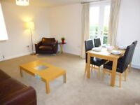 Ref 135-Immaculate & bright 2 bed property in East Suffolk Park, Newington, avail from 07 March!