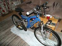 Males Mountain Bike