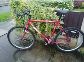 Mens red bike