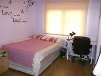 SHORT LET - Large double bedroom in Denmark Hill