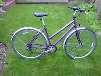 Ladis Rayleigh bicycle
