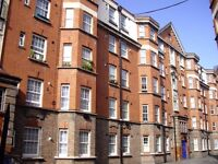 Professional looking for 1 bed flat/house - £850/£900 per month housing benefits/dss accepted