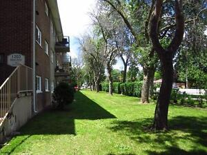 On-site laundry, pets OK: London 1 Bedroom Apartment for Rent