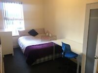 stunning large room available for working professionals!!