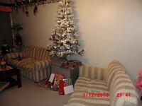 Christmas tree/lights decorations