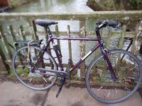 Single speed Jamis Beatnik bike 2014