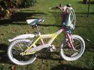 Raleigh Kool Miss Girls Bike