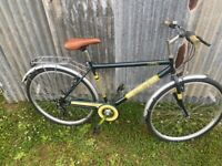 Universal Stirling Unisex bike bicycle