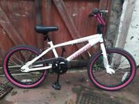 Muddy fox bmx bike can deliver