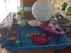 X large hamster cage