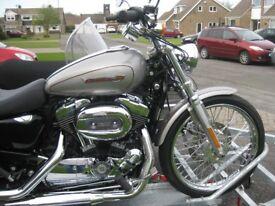 Showroom Condition Harley Davidson XL 1200 C Custom Sportster & Watsonian Sidecar