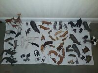 Collection of Schleich toy animals (62 items)