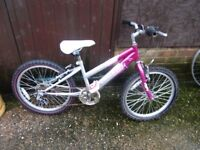 girls 20inch wheeled raleigh krush mountain bike suit age upto 7yrs old £25.00