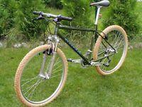 Wanted Kona Mountain Bike