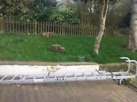 Double extension aluminium cat/roof ladder
