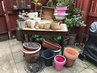 Planters / hanging baskets