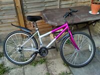Bicycle for quick sale - Ladies Mountain Bike