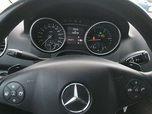 2010 Mercedes-Benz M-Class ML350 BlueTEC Kitchener / Waterloo Kitchener Area image 13