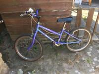 Purple Raleigh bike