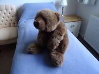 Large Soft Brown Bear