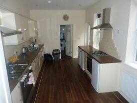IMMACULATE PROFESSIONAL ROOMS TO RENT