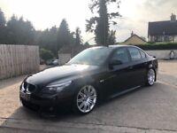 2008 BMW 520D Msport Auto Lci Top Spec (Not 525, 535, 530, Golf, jetta, leon, 320, 330)