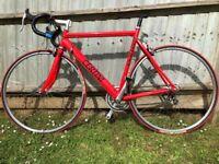 Classic Certini Italian road racing bike 16 Speed, High spec! With Campagnolo Veloce Crank Set.