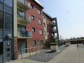 Lovely 2 bedroom flat in gated development, barking IG11
