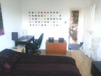 STOKE NEWINGTON - LARGE, bright double room in split level house conversion to share with 1 other.