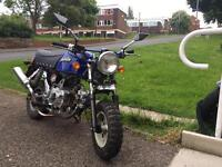 Skyteam monkey bike 110cc