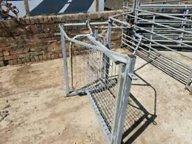 Sheep handling race shedding gate shedder farm livestock tractor