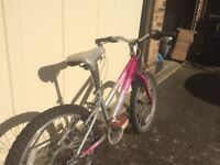 Girl's Raleigh mountain bike