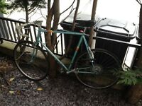 Very Large 63CM Peugeot racer road bike for sale. Frame snapped at rear fork this week (see pic)