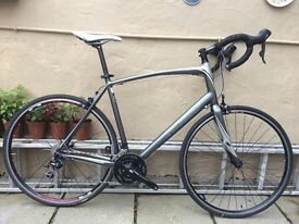Specialized Secteur Elite Road Bike size XXL 61 cm