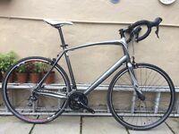 Specialized Secteur Elite Road Bike size XXL 61 cm