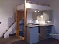 Studio flat in Elmore Road, Sheffield, S10 (#1014365)
