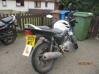 Honda CBF 125 M-9