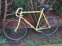 RALEIGH RACING BIKE, EXCELLENT CONDITION, 12 SPEED GEARS, 21 inch FRAME, 27 inch WHEELS