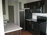 Renovated Apartments Available Now